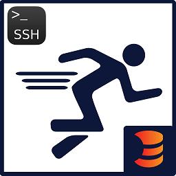 SSH Runner logo