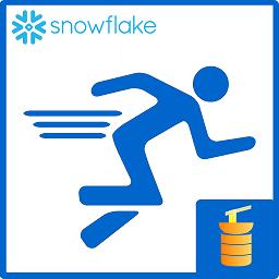 Snowflake SQL Runner logo